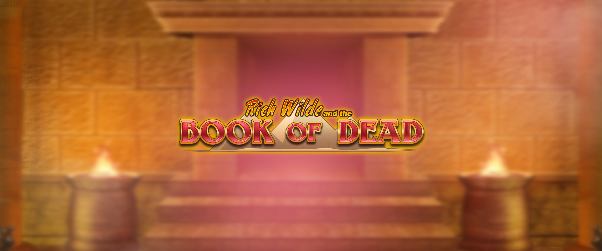 Storgevinst på Book of Dead hos Wildz